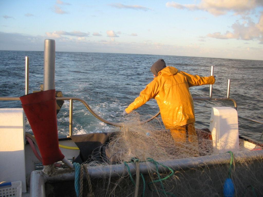 Pescatourisme