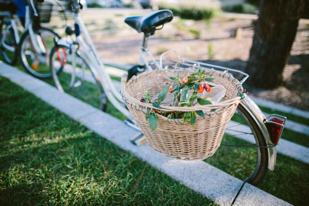 Vélos et balades