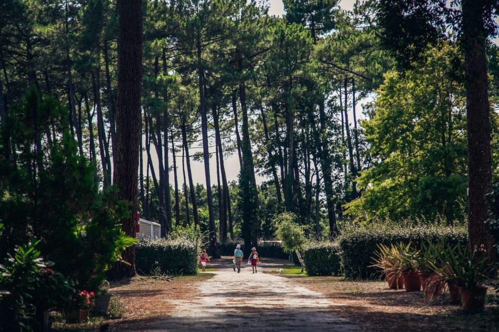 Camping-la-civelle-landes-atlantique-sud–1-